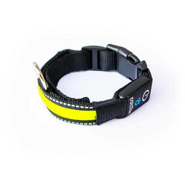 Tractive LED obojek pro psy Žlutá