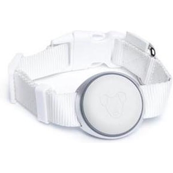 Mishiko Premium GPS a fitness obojek Bílá